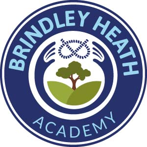Brindley Academy
